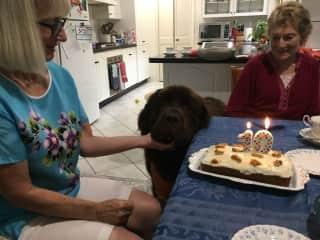 Mo's 10 Birthday Party at Bowral NSW.