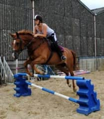 Jumping with Chester