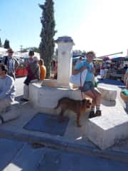 Finn at the local Provencal market