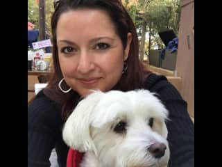 Kristal and Martini.  Our pup of 14 years.