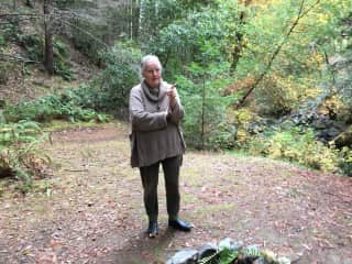 In redwoods.