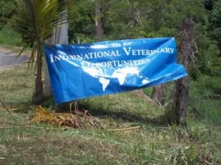 We volunteered with the Florida Vets while living in Roatan.  It was the experience of a lifetime!