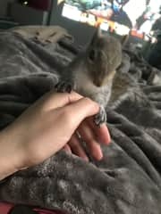 Rehabilitation and quality time with Squirrel Baby!