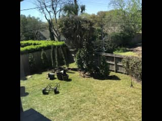 Large fenced-in backyard for dogs to run free.