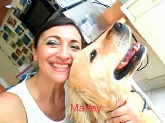 Marley, Sonia's dog.
