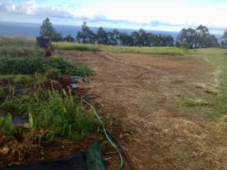 My farm... ready to expand the kitchen garden