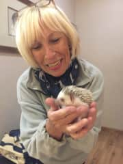 With a pet hedgehog in Pretoria/SA
