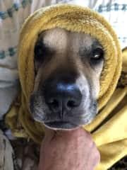 Call home E. T. !! 😁