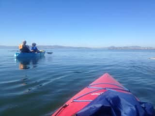 Kayaking in the South Bay