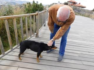 Bob dog petting in Los Ilinios, Ecuador