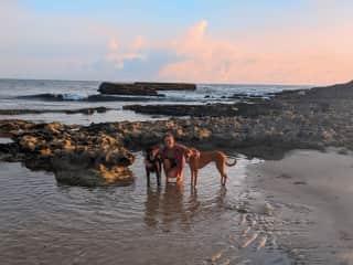 Dog sitting in Puerto Rico - sunrise beach walks every morning