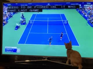 Charlotte watching the US Open.