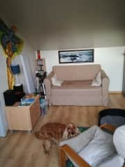 The guestroom, with the sofabed.
