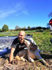 Apart from housesitting we also like to volunteer on organic farms. Bart is extra happy when there is a farm dog! Love at first sight in la Verdurette in the south of France.