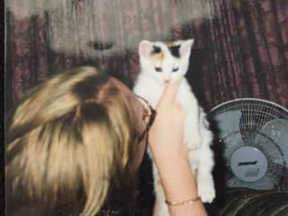 Lille, our rescue kitten, Lille with our daughter Linda, in 2000