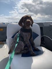 Freddie's first boat ride.