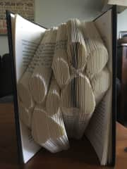 My love of books also includes recycling them...I book fold!