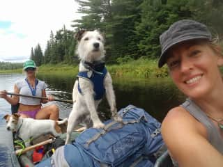 Our annual Boundary Waters camping trip always includes at least one dog!