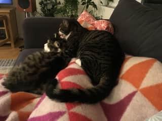 Ernie & Lou