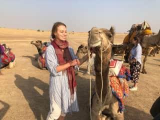 (Not my camel) Safari in Rajasthan, India