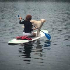 I like to paddle.