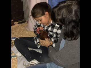 Granddaughter and foster mini rooster, Tyrion