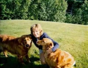 Two Goldens I house sat many times.