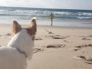 Frank & Anna at our local beach.