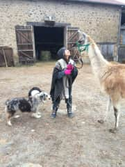 I worked on a farm near Limoges, France. The best part was taking care of the llama and hanging out with the farm dogs.