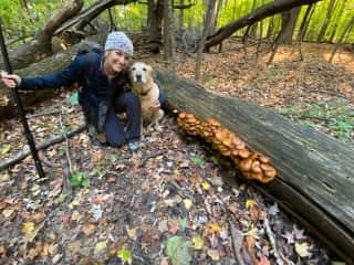 """My """"hunting"""" dog. Mushroom hunting, that is!"""
