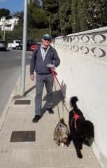 Ron walking Bennie & Luna.