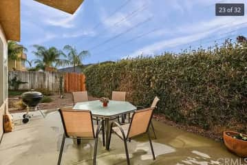 Back yard. Palm Trees. Lawn is outside of this picture.