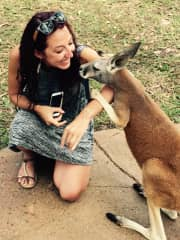 Laura meeting her first Kangaroo