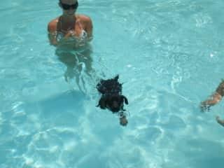 Teaching Chopper to Swim