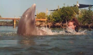 Tursi - a 900 lb bottlenose - and I played together in her domain.