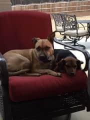 Dakota and Mandy chilling on the back porch