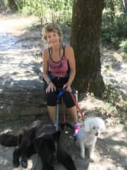 Hiking with two dogs in Petrified Forest