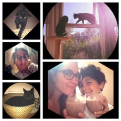 Kayin my son, cats and me!