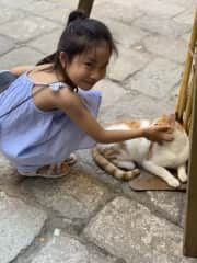 both my children love animals, we found cats every corner in Venice.  Emily love to pet a cats