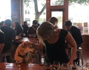 Pet friendly businesses in Seattle. :)