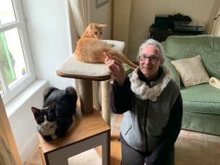 Pet sitting my former foster kittens Eiffel and Amber in their forever home Jan 2019