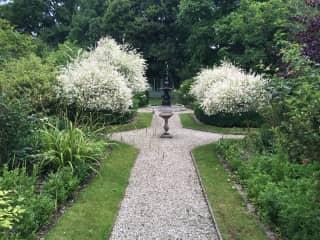 Our Secret Garden - no-one knows it exists!