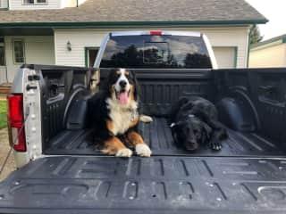 Tucker and Cleo