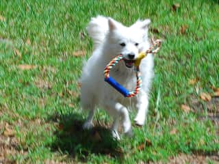 Playing catch with Cloud