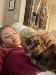 Evening Kitty snuggles with Pollyanna in Phoenix, AZ.