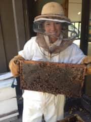 The Naturalist at my local nature park let me don a beekeeping suit and showed me the hive.  I was so enthralled I wanted to learn more, so I attended a Beekeeping class at the University of Minnesota.
