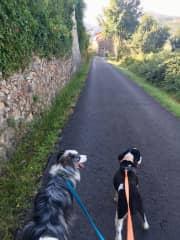Morning walks in Vorno