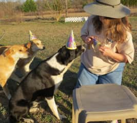 Birthday party for Buddy with Baby & Ladie!