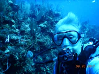 We love to scuba dive!