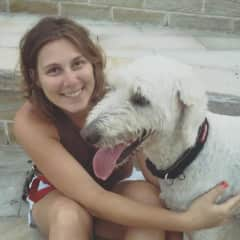 Veronika with Frank the Tank, groodle we used to dogsit